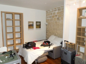 Paris Apartment1